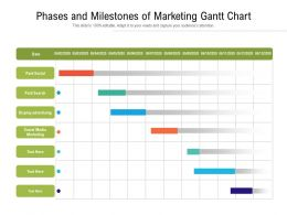 Phases And Milestones Of Marketing Gantt Chart