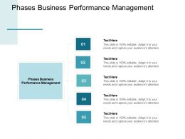 Phases Business Performance Management Ppt Powerpoint Presentation File Cpb