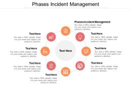 Phases Incident Management Ppt Powerpoint Presentation Professional Summary Cpb