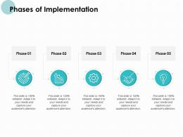 Phases Of Implementation Target Powerpoint Presentation Infographic