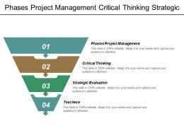 Phases Project Management Critical Thinking Strategic Evaluation Marketing Testing Cpb