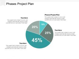 Phases Project Plan Ppt Powerpoint Presentation Icon Infographic Template Cpb