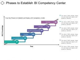 Phases To Establish Bi Competency Center