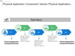 Physical Application Component Version Physical Application Component Instance