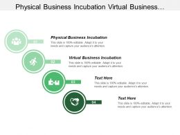Physical Business Incubation Virtual Business Incubation Common Services