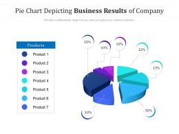 Pie Chart Depicting Business Results Of Company