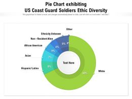 Pie Chart Exhibiting US Coast Guard Soldiers Ethic Diversity