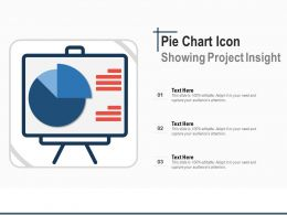 Pie Chart Icon Showing Project Insight