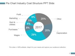Pie Chart Industry Cost Structure Ppt Slide