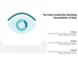Pie Chart Inside Eye Showing Visualization Of Data