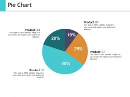 Pie Chart Ppt Show Slide Portrait