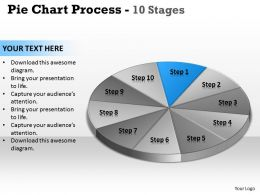 pie_chart_process_10_stages_3_Slide02