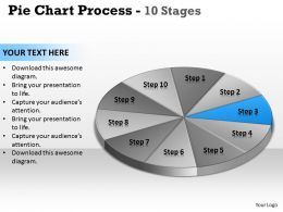 pie_chart_process_10_stages_3_Slide04