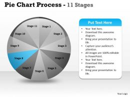 pie_chart_process_11_stages_3_Slide09