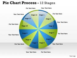Pie Chart Process 12 Stages 3