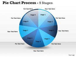 Pie Chart Process 9 Stages 5