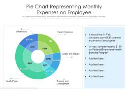 Pie Chart Representing Monthly Expenses On Employee