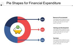 Pie Shapes For Financial Expenditure