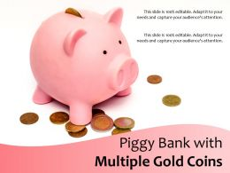 Piggy Bank With Multiple Gold Coins