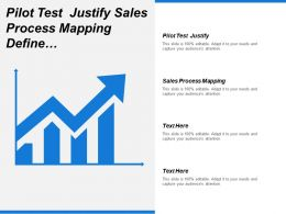 Pilot Test Justify Sales Process Mapping Define Market