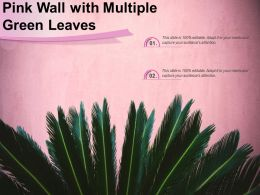Pink Wall With Multiple Green Leaves