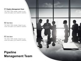 Pipeline Management Team Ppt Powerpoint Presentation Icon Rules Cpb