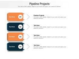 Pipeline Projects Ppt Powerpoint Presentation Styles Show Cpb
