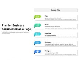 Plan For Business Documented On A Page