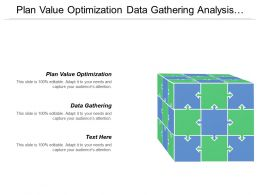 Plan Value Optimization Data Gathering Analysis Evaluation Some Substitution