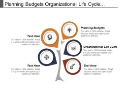 Planning Budgets Organizational Life Cycle Personal Business Development