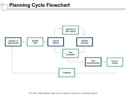 Planning Cycle Flowchart Explore Options Ppt Powerpoint Presentation Infographics Professional