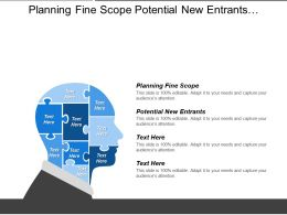 Planning Fine Scope Potential New Entrants Strategic Implementation Cpb