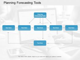 Planning Forecasting Tools Ppt Powerpoint Presentation Icon Example Topics Cpb