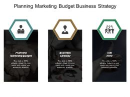Planning Marketing Budget Business Strategy Category Management Process Cpb