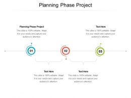 Planning Phase Project Ppt Powerpoint Presentation Show Model Cpb