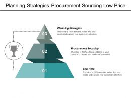 Planning Strategies Procurement Sourcing Low Price Strategy Business Demand Cpb