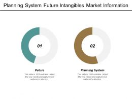 Planning System Future Intangibles Market Information System Product Strategies Cpb