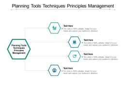 Planning Tools Techniques Principles Management Ppt Powerpoint Presentation Infographic Cpb