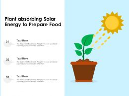 Plant Absorbing Solar Energy To Prepare Food