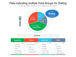 Plate Indicating Multiple Food Groups For Dieting