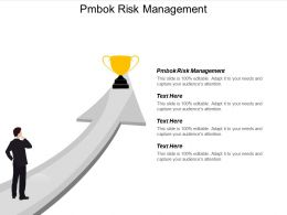 Pmbok Risk Management Ppt Powerpoint Presentation Gallery Example File Cpb