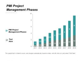 Pmi Project Management Phases Ppt Powerpoint Presentation Icon Model Cpb