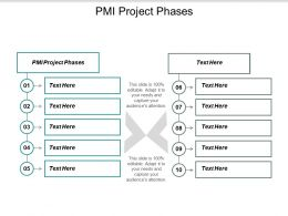 Pmi Project Phases Ppt Powerpoint Presentation Icon Outline Cpb