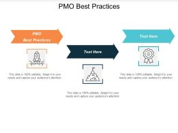 Pmo Best Practices Ppt Powerpoint Presentation Gallery Influencers Cpb