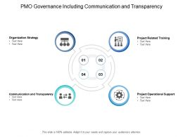 PMO Governance Including Communication And Transparency