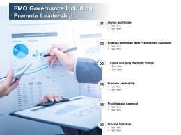 PMO Governance Including Promote Leadership
