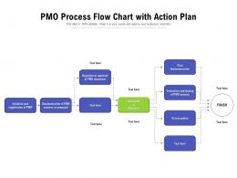PMO Process Flow Chart With Action Plan