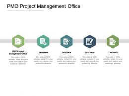 PMO Project Management Office Ppt Powerpoint Presentation File Graphics Download Cpb