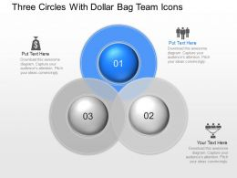pn Three Circles With Dollar Bag Team Icons Powerpoint Template Slide