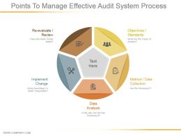 Points To Manage Effective Audit System Process Ppt Infographics